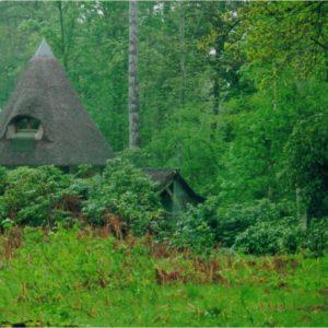 Le kiosque vu de loin mai 1993