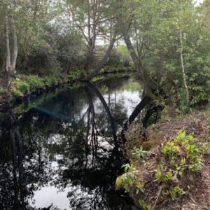 Réservoir plein 2020