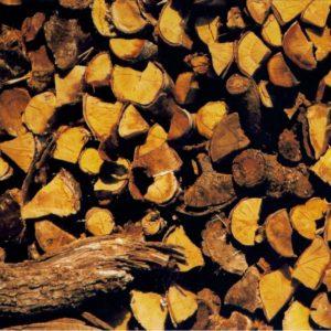 steres de bois